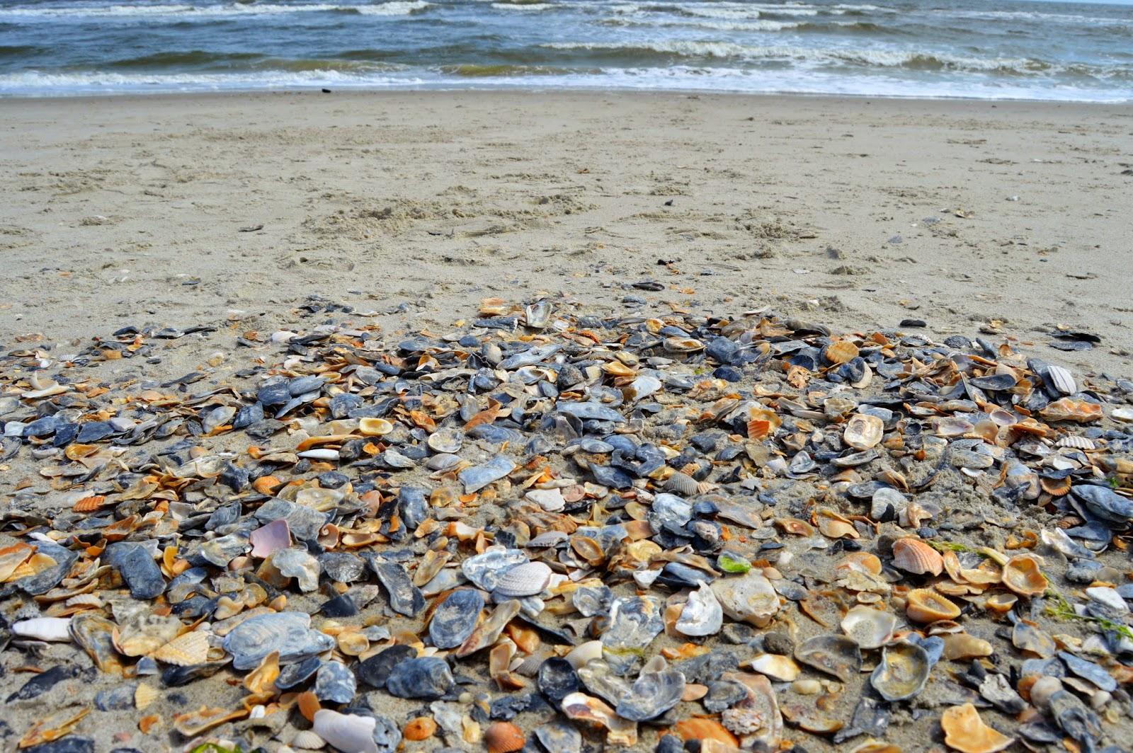 North Carolina, beach, North Carolina beaches, Ocean Isle Beach