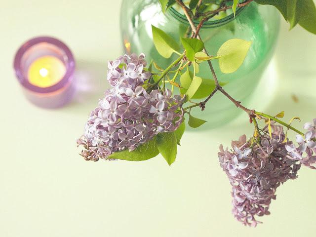 sireeni syreeni syreeninoksa sireeninoksa iittala kivi lila lilac