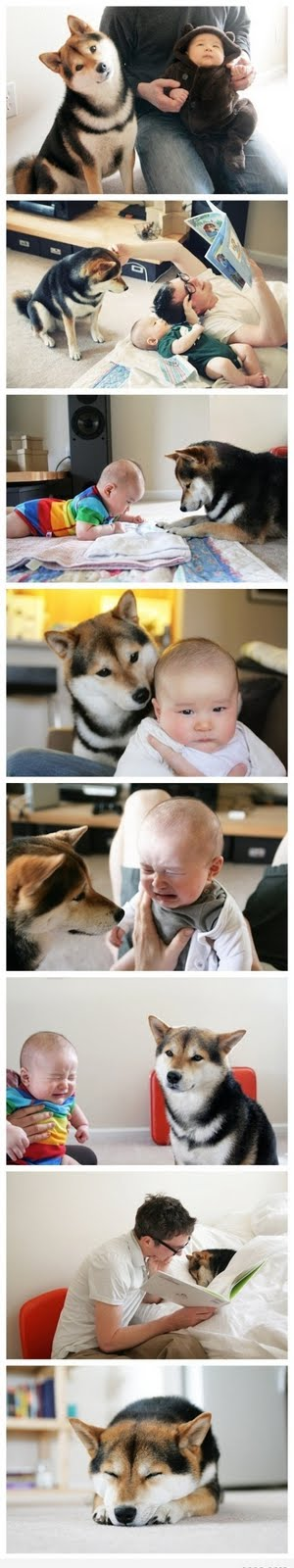 Cutest Pic Ever Funny Pic