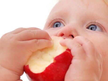 alimentacion del bebe