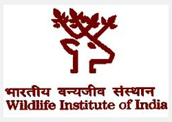 The Wildlife Institute of India-Government Vacant