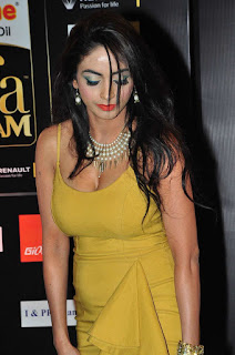 Actress Pooja Sri Latest Pictures at IIFA Utsavam Awards 2016  25282.jpg