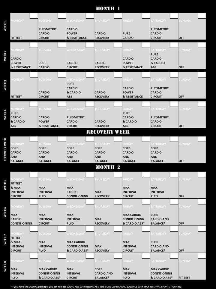 insanity workout fitness guide download
