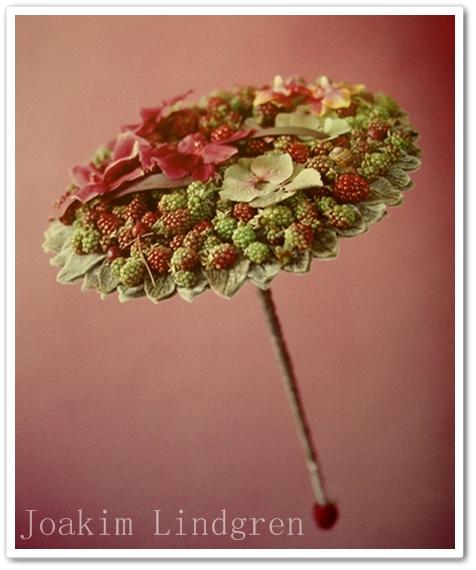 florist joakim lindgren