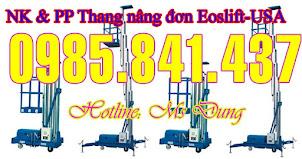 Thang nâng đôi, thang nâng đơn, thang nâng trượt (125kg - 10m)