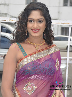 actress lavanya ina super hot transparent sari
