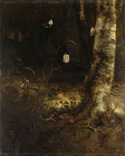 Otto Marseus van Schrieck - Bosgrond met een slang, hagedissen, vlinders en andere insecten