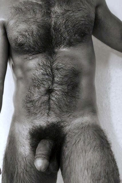 Men hairy naked balls with