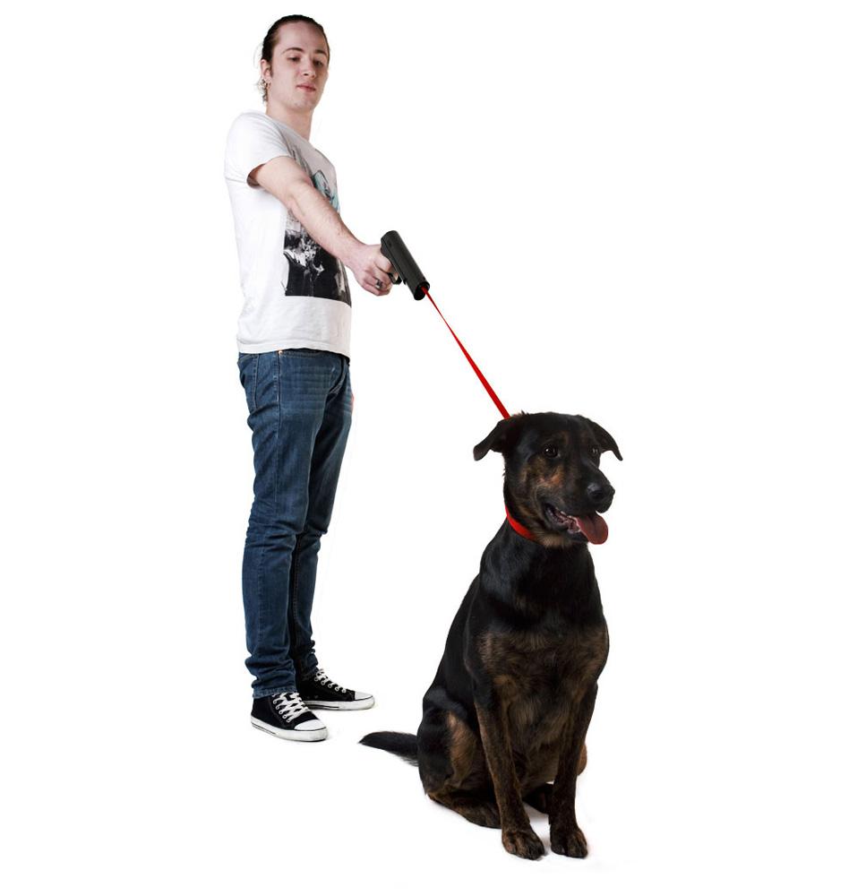 Retractable Dog Lead Kmart Review