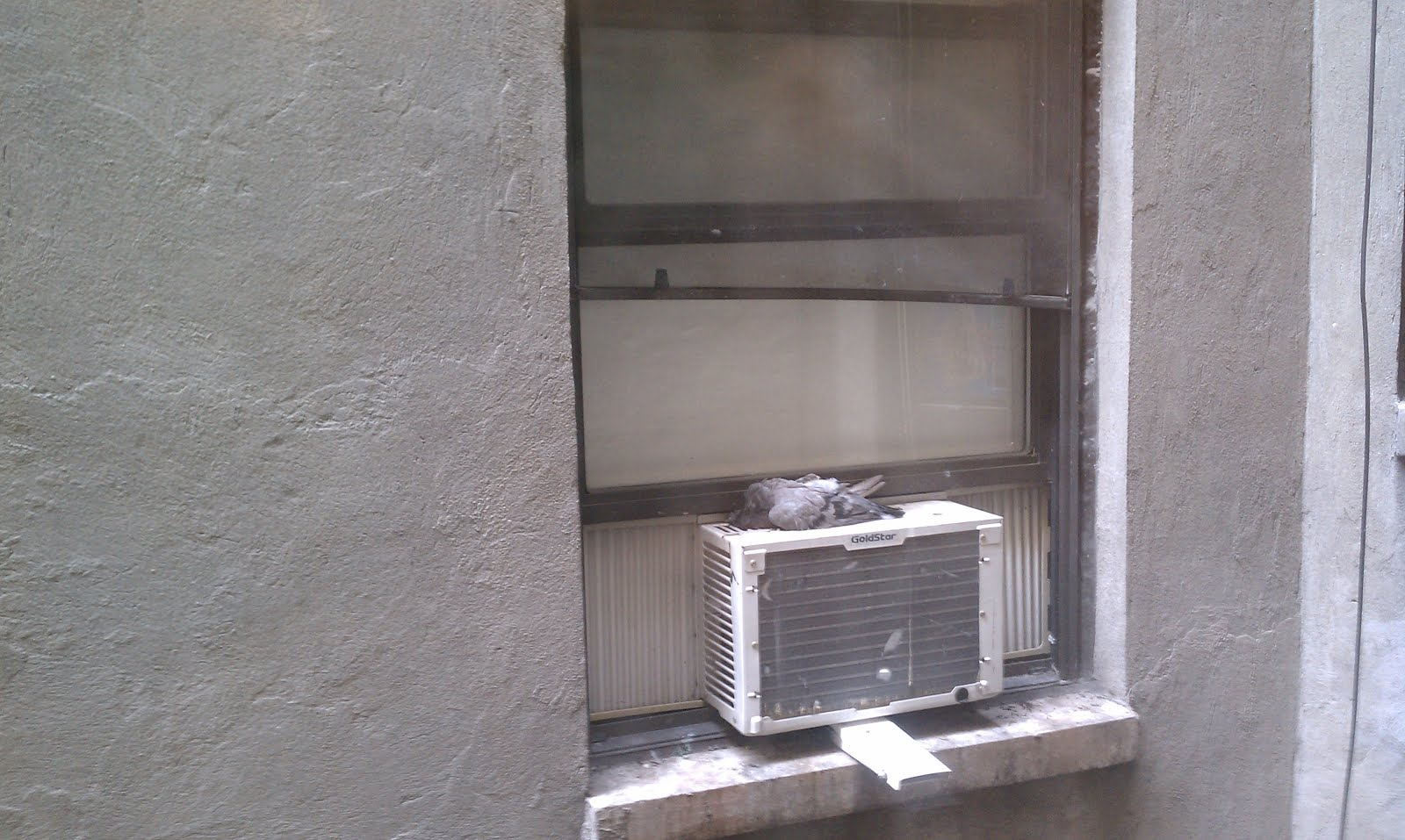 Air conditioner new york november 2012 for Air conditioner bracket law
