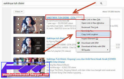 cara download video di internet dengan software