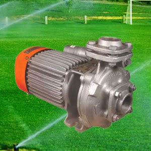 Kirloskar KDS-212+ Monoblock Pump (2HP) | 2HP Kirloskar KDS-212+ Agriculture Pump Online, India - Pumpkart.com