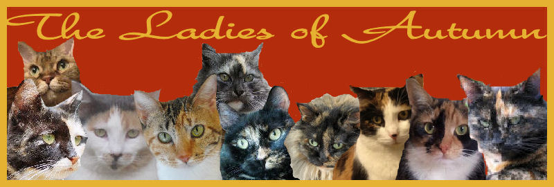 The Ladies Of Autumn