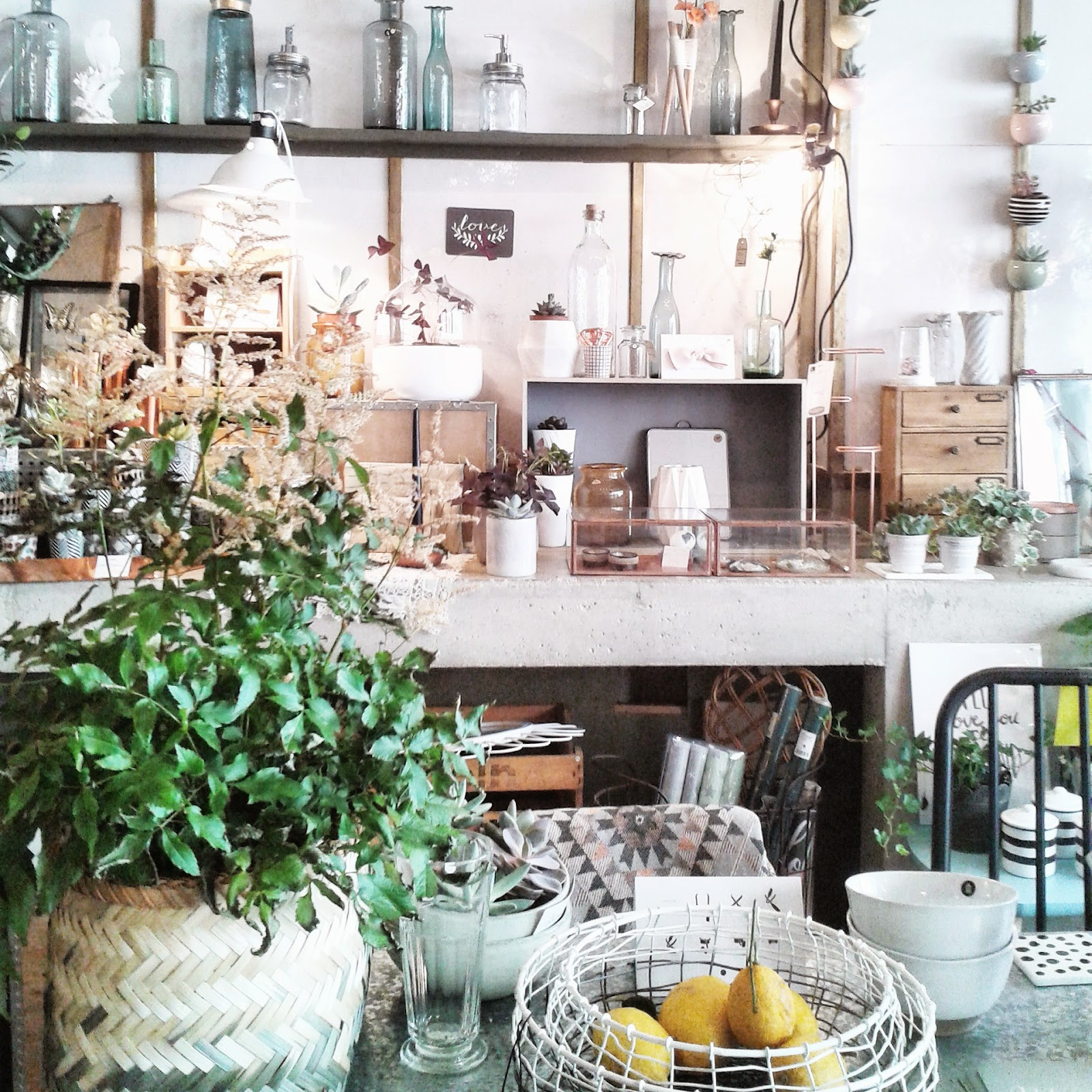 Paris / Boutique Les fleurs / Photos Atelier rue verte /