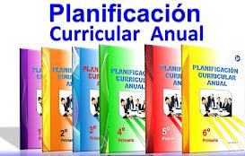 Planificación Curricular 2018