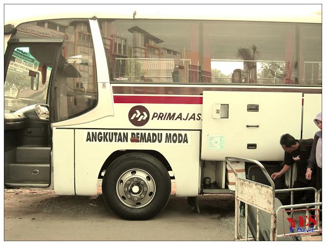 Primajasa Bus
