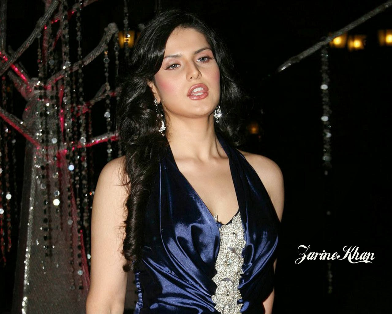 Zarine Khan Latest Hot Pics Gallery [HD Photos] HD Wallpapers Free Download