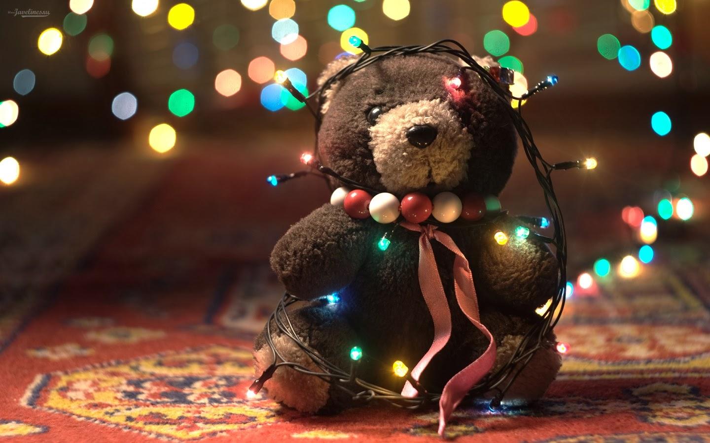 Gấu bông đêm giáng sinh...
