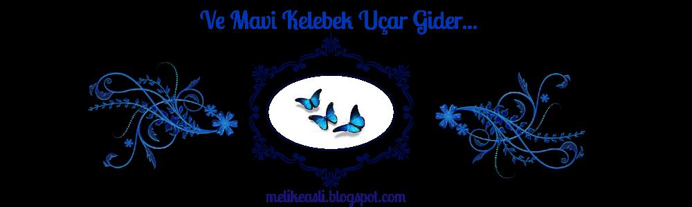 ve mavi kelebek uçup gider!