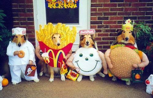 http://clarkjbrooks.blogspot.com/2009/11/happy-national-fast-food-day.html