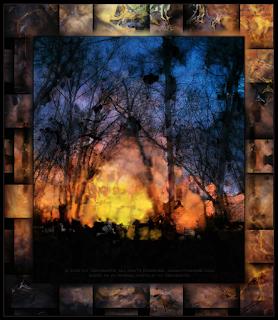 Ceremony in the Woods Copyright 2015 Christopher V. DeRobertis. All rights reserved. insilentpassage.com