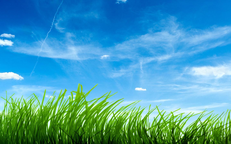 Blue Sky Greengrass