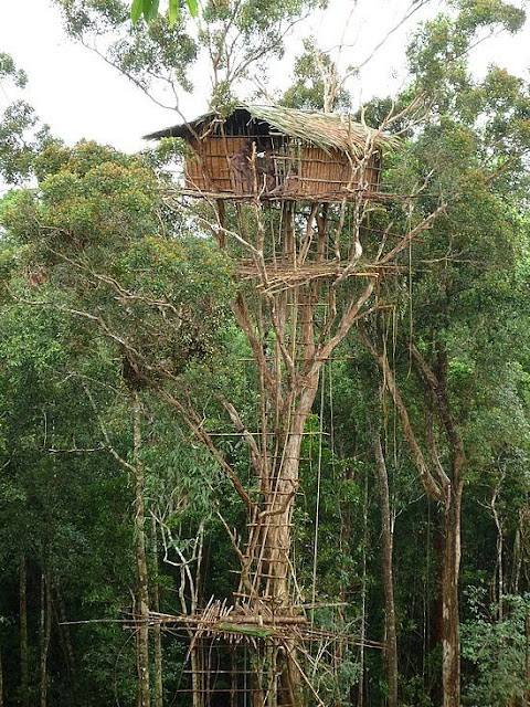 5 Rumah Unik yang Ada di Indonesia, Rumah Domes, Goa Gala, Istana Wong Sintinx, Rumah Pohon, Rumah Botol, bentuk rumah unik, model rumah unik, desain rumah unik, foto foto rumah unik, rumah unik di indonesia, rumah yang unik
