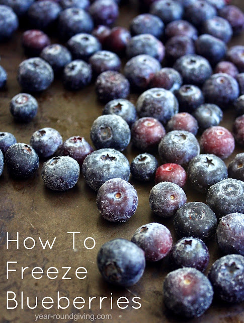 How to Freeze Blueberries