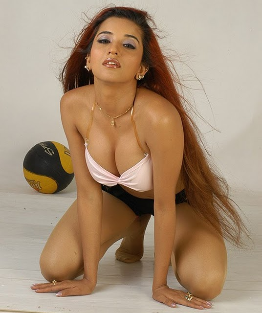 south indian actress spicy photo gallery   modelings