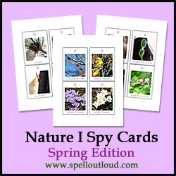 Nature I Spy Cards Spring Edition