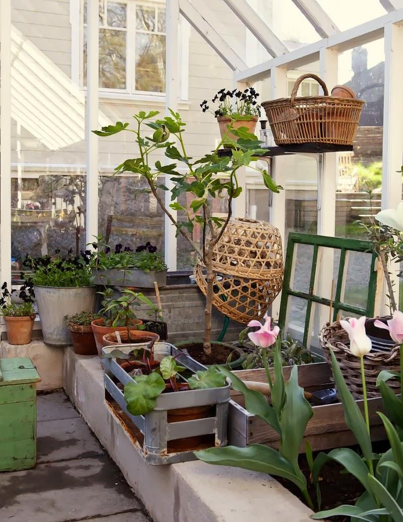 home garden un jardin d 39 hiver ensoleill. Black Bedroom Furniture Sets. Home Design Ideas