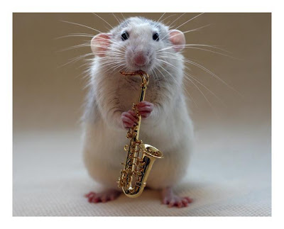 Rat playing a saxophone