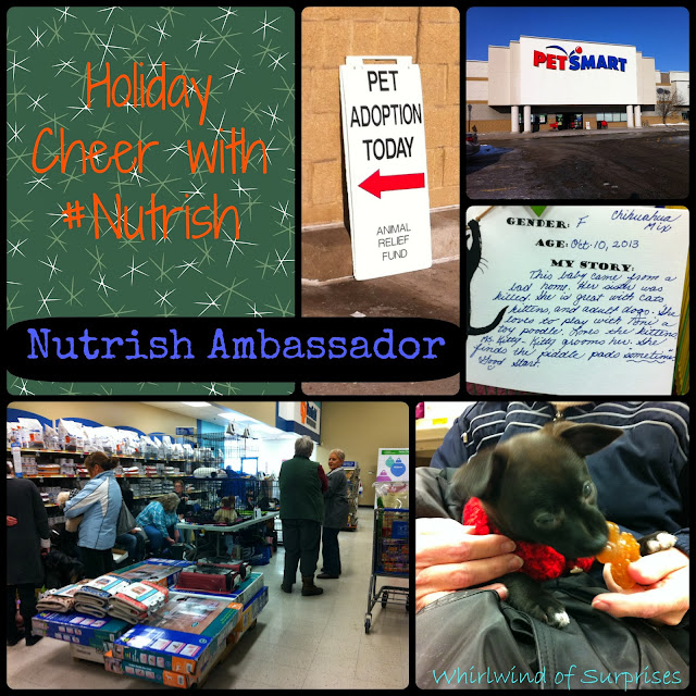 Spreading holiday cheer with adoption as a #Nutrish Ambassador