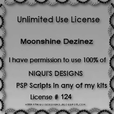 PU Unlimited Use Niqui's Designs