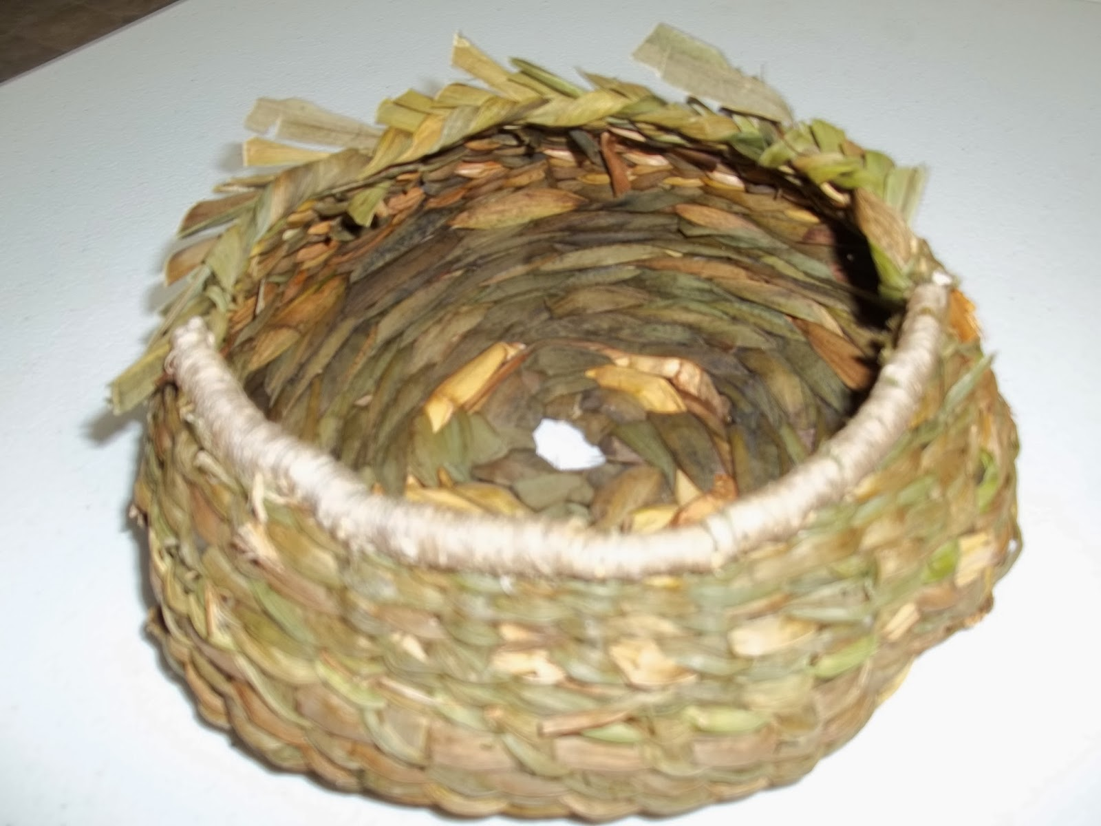 How To Weave A Basket Out Of Cattails : Little turtle basket weaving and supply quot round cattail