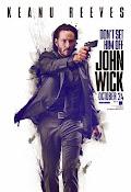 John Wick (Otro día para matar) (2014) [Vose]