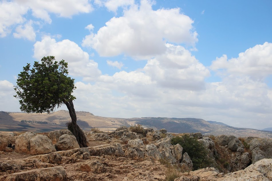 Study in Israel this Spring!