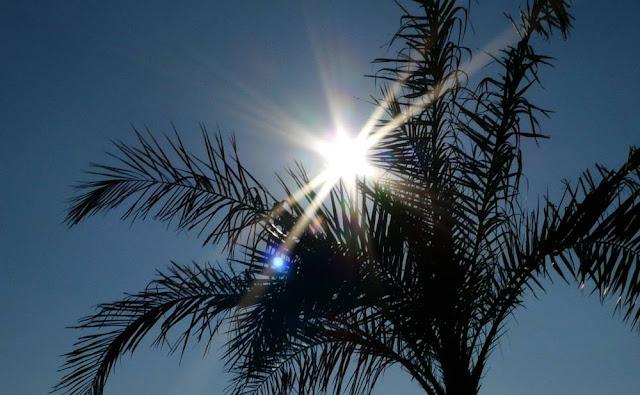 Ostatnie chwile z hiszpańskim słońcem - Torremolinos