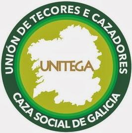 UNITEGA: CAZA SOCIAL DE GALICIA