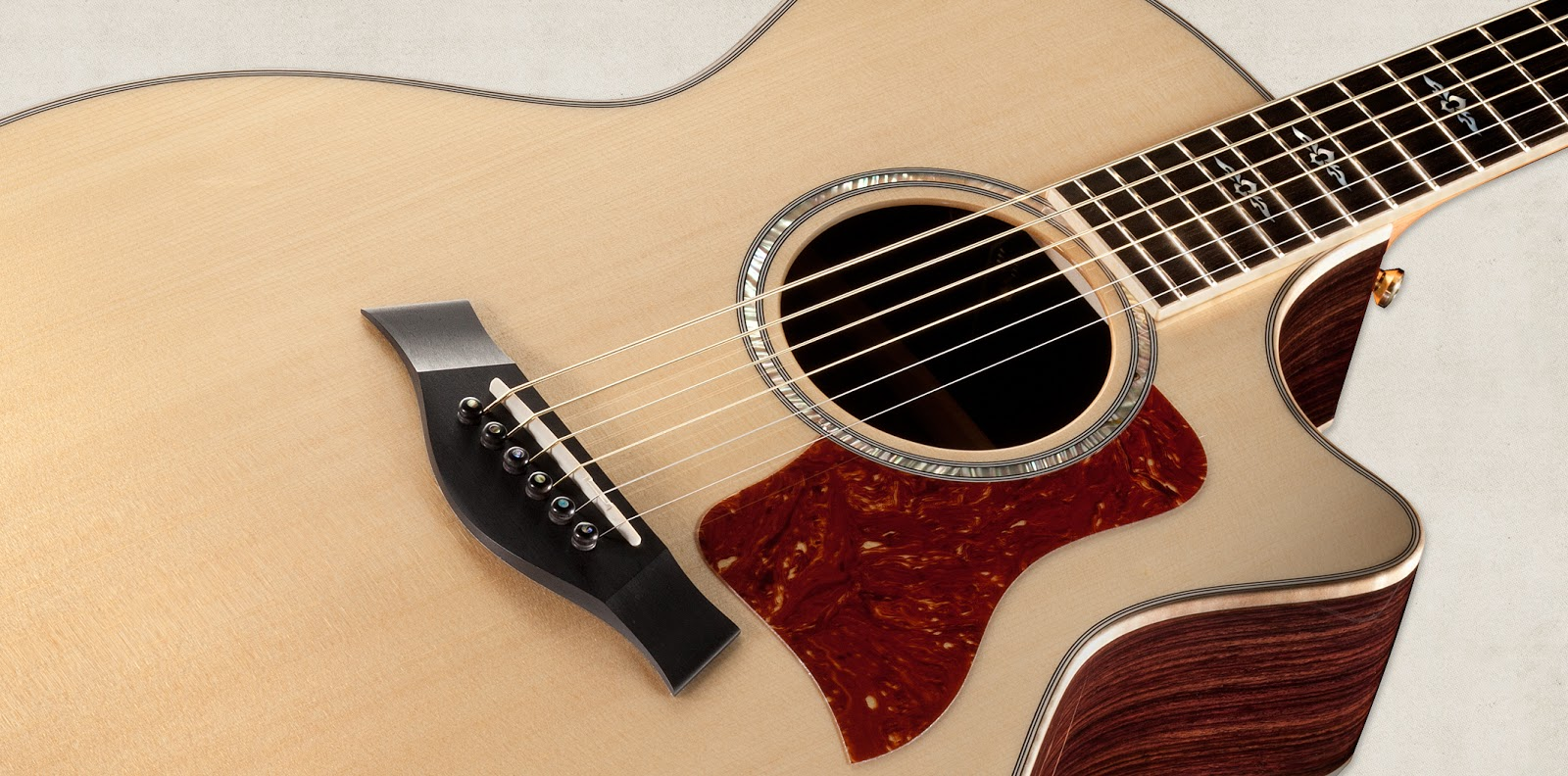 Guitar price list in bangalore dating 2