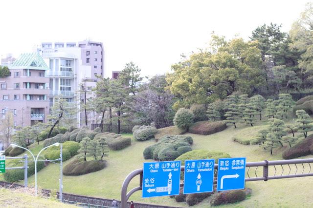 Parque Yoyogi, Shibuya, El Cuaderno de Pili