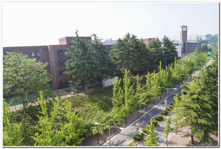 Jeonju University Star Tower Dormitory. Unofficial blog