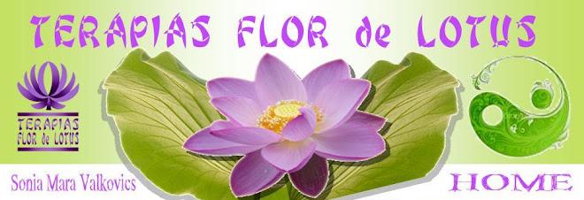 NUCLEO DE TERAPIAS FLOR DE LOTUS