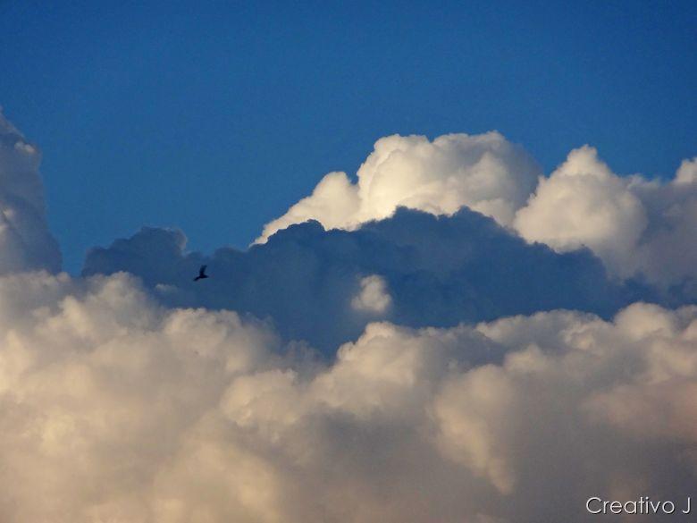 Parque asomadillas cordoba españa nubes pajaro