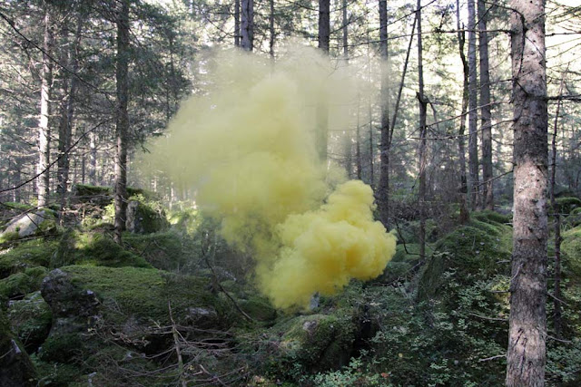 Silence/Shapes no. 2 by Filippo Minelli, an ongoing series of photos taken all over the world. fantasy photography forest, colored smoke, yellow smoke, smoke bomb, smoke grenade, photography