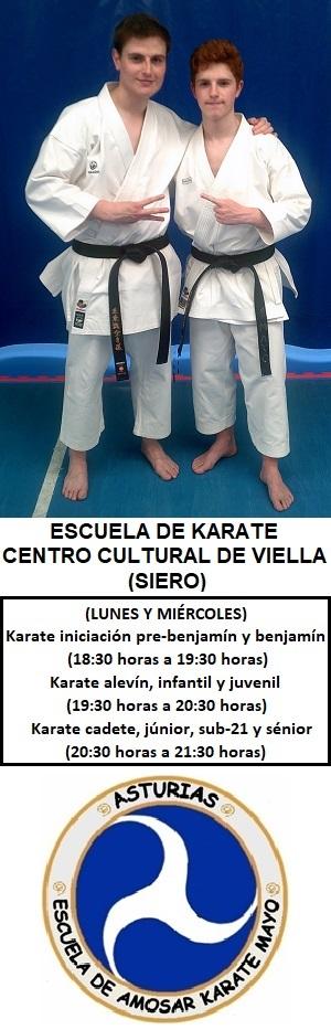 Escuela de Karate Centro Cultural de Viella (Siero)