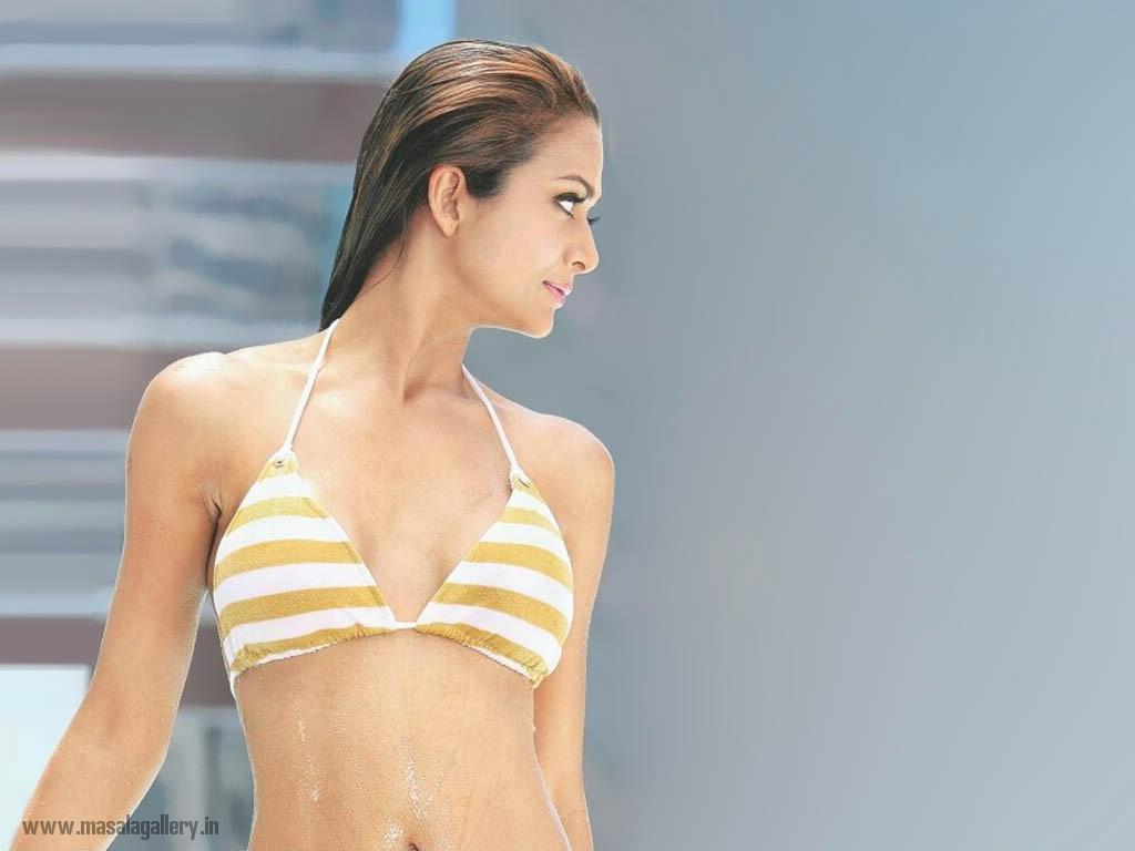 Sexy Amrita Arora in Bikini - MASALA GALLERY Flora Saini