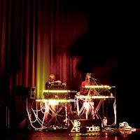 Vile Electrodes (Martin Swan, Anais Neon) live @ E-Live 2015 / photo S. Mazars