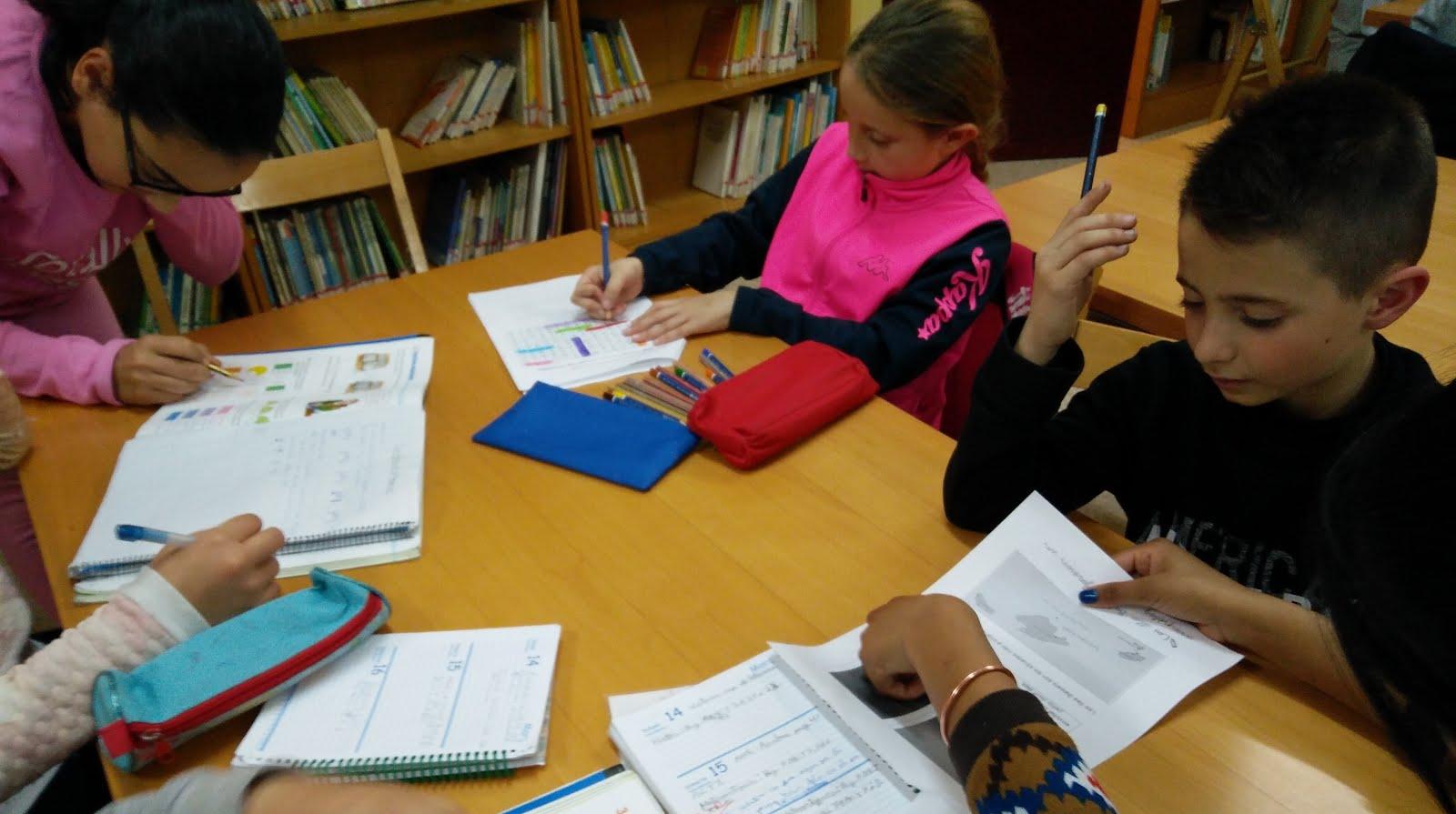 Biblioteca Tutoritzada