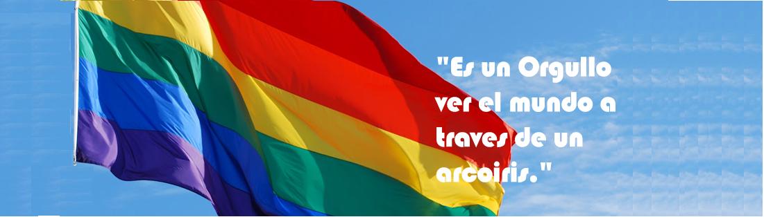 INFORMACION LGTB DE COGAM